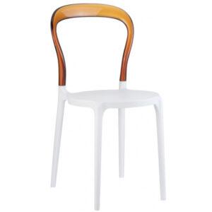 Plastik Sandalye BSS056