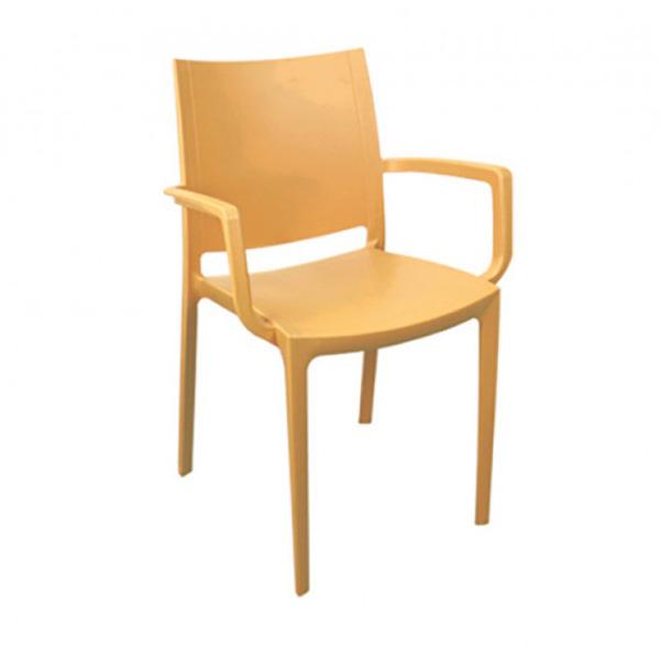 Plastik Sandalye