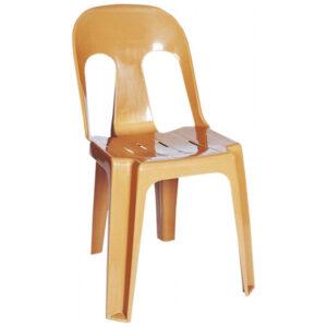 Plastik Sandalye BSS020