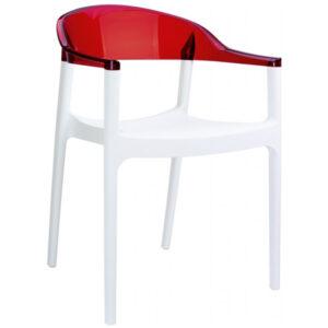 Plastik Sandalye BSS059